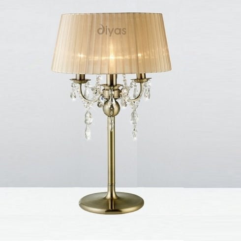 Diyas Olivia IL30066/SB Antique Brass Crystal Three Light Floor Lamp with Bronze Shade